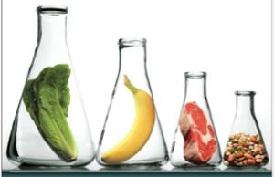 food beaker testing