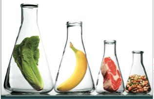 CARO Food Microbiology | CARO.ca