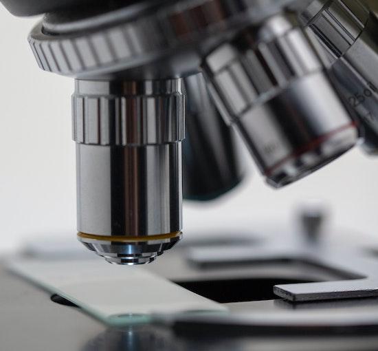 Cannabis Potency Testing